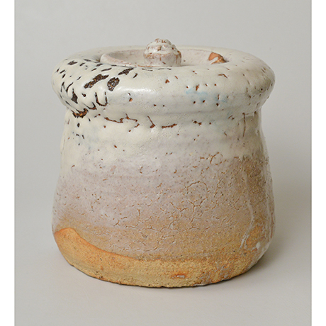 「No.9 三輪休和 萩水指 / MIWA Kyuwa Water jar, Hagi ware」の写真 その3
