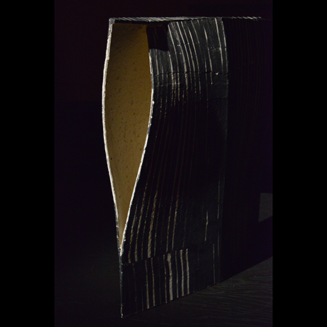 「No.39 蛻 / Artwork, Monuke (Ecdysis)」の写真 その4
