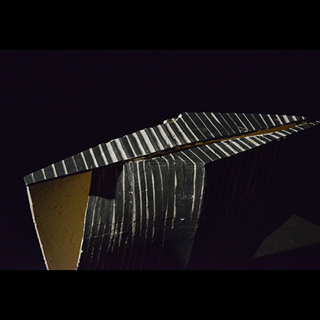 「No.39 蛻 / Artwork, Monuke (Ecdysis)」の写真 その6