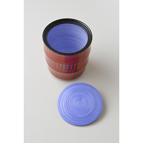 「No.7(図7) 色絵洋彩蓋物 / Covered vessel, Overglaze enamels」の写真 その4